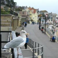 Lyme Regis, West Dorset